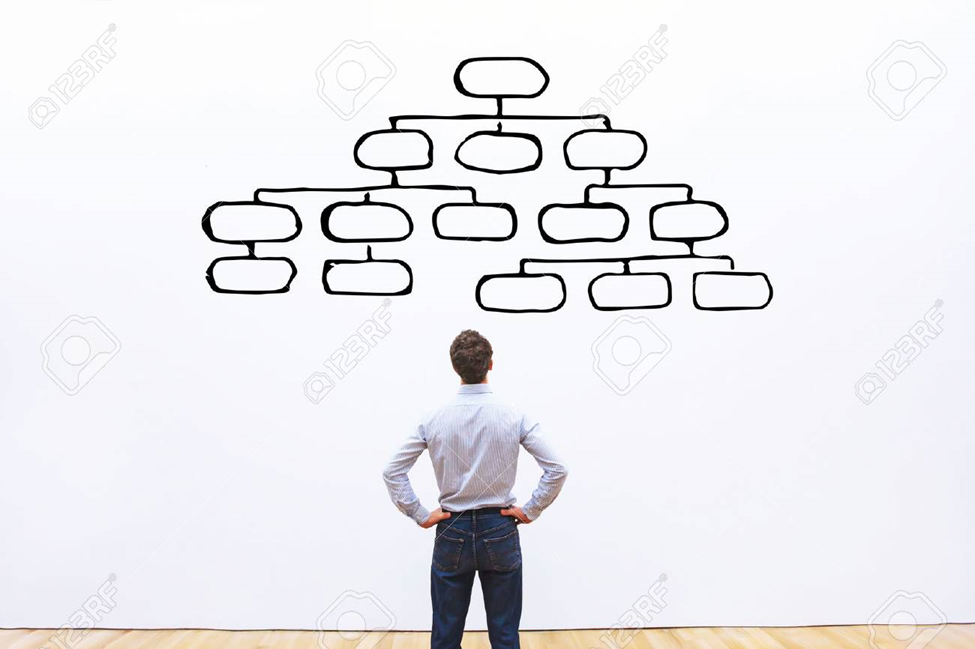 The importance of the Organization Chart in a Company
